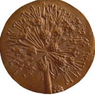 medalla flor de anis